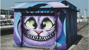 Blog cat image